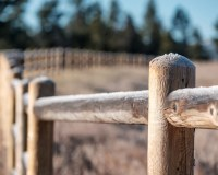 144: Fencing Easements – A positive covenant that can be enforced by successors